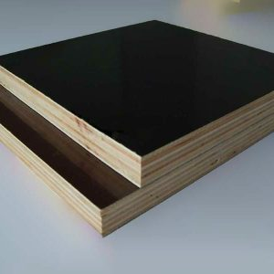 Resin Ply