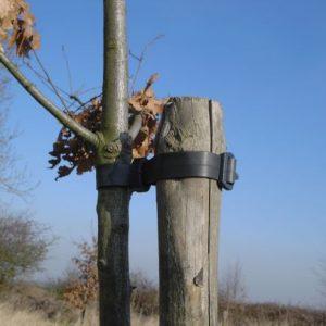 Forestry & Ground Maintenance